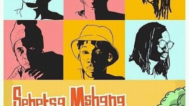 Photo of Review: Sebetsa Mshana music video by Origin Musiq