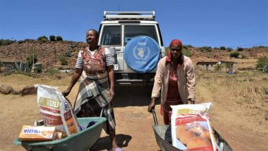 Photo of FAO predicts food scarcity catastrophe