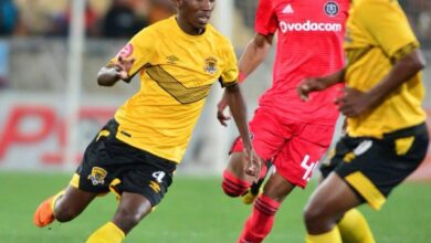 Photo of Makhopo signs with Swallows