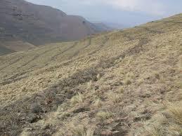 Photo of Lesotho adopts global environmental law